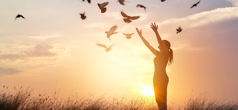 Woman praying and free bird enjoying nature on sunset background